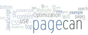 Website Optimization by Andrew B. King